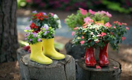 Gumboot garden