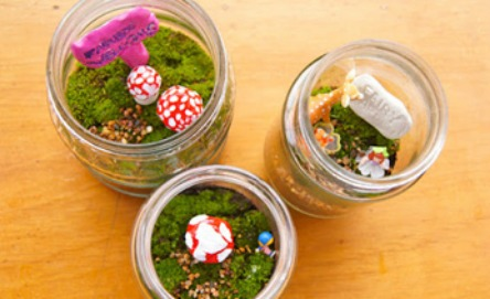 Make a fairy garden terrarium