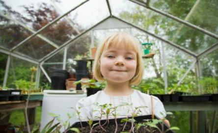 Make a self-watering pot