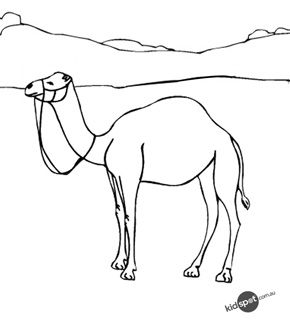 Camel Colouring Page