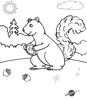 Nutty Squirrel Colouring Page