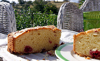 French raspberry butter cake