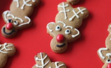 Christmas gingerbread reindeer