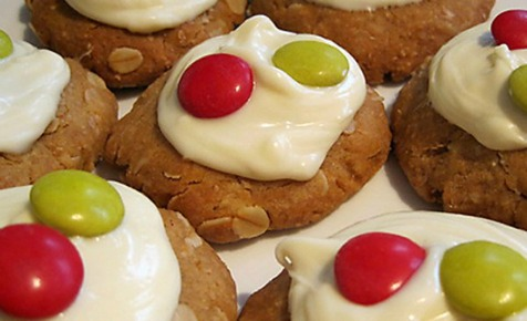 Ginger oat  Christmas biscuit