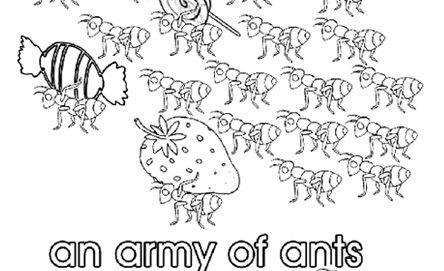 Collective Nouns An Army Of Ants Colouring Pages