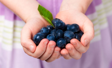 Discover the five top superfoods and healthy foods as well as how best to introduce them to  your family's diet to give it a nutritional boost.