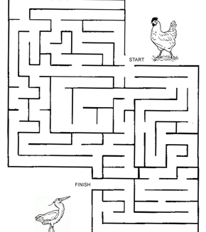 Bird And Chook Maze