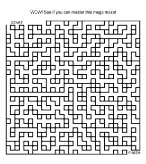 Super Tricky Maze!