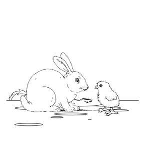 Chicks and The Rabbit Colouring Page