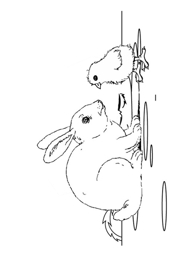Free Online Chicks and The Rabbit Colouring Page Kids