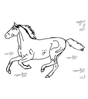 Galloping Horse Colouring Page
