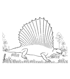 Pelycosaur Colouring Page
