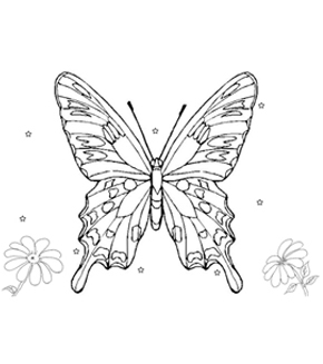 Spotted Butterfly Colouring Page