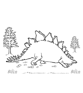 Stegosaurus Colouring Page