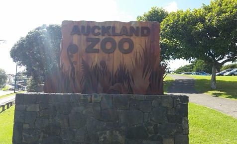Auckland zoo african precinct