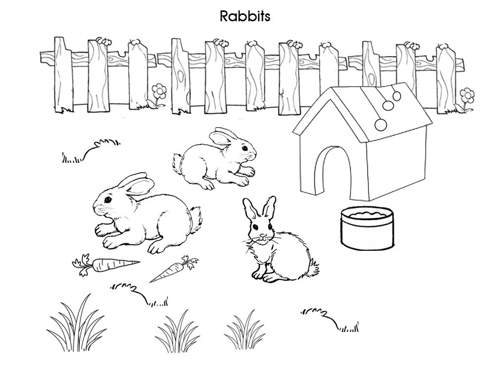 Rabbits Free Printable Colouring Pages